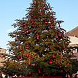 20131207 クリスマスツリー